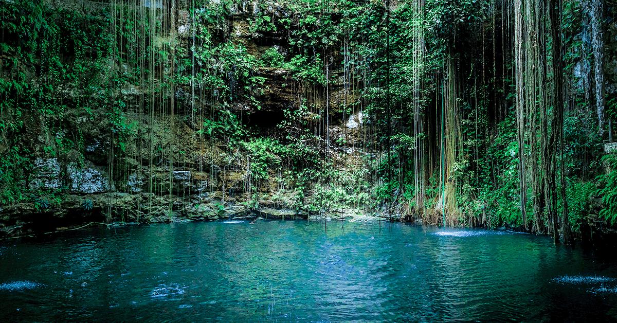 Contribuimos con acciones a la conservación de una de las mayores riquezas de México: El Agua