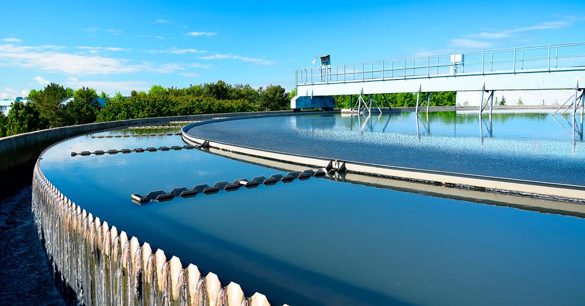 El agua: Nuestro pilar fundamental de conservación