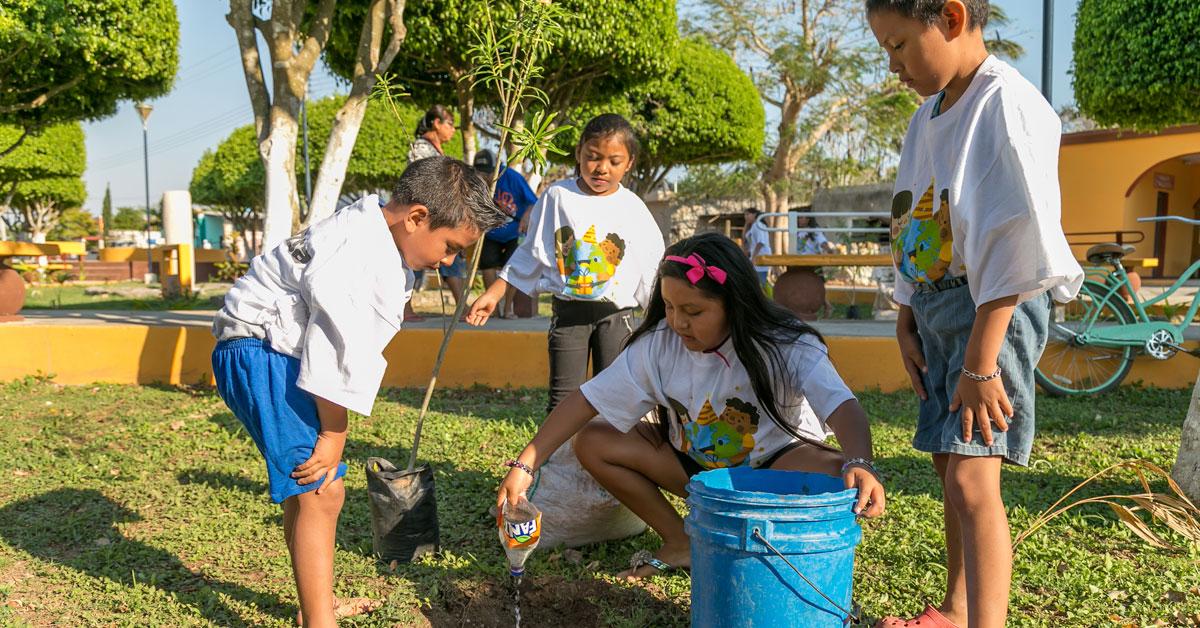 5 motivos para respetar los árboles y seguir reforestando